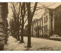 Pola veka Prodajne galerije Beograd