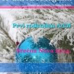Tema broja 012: Godinu dana AAM, Novogodišnji broj