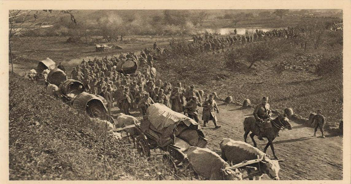 Černov, srpska vojska, povlačenje, 1915