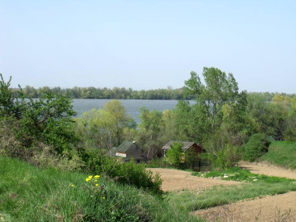 Dunav u Višnjici