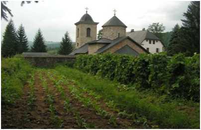 Manastir Gomionica, foto Laura Barna