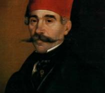 Dragomir Ćulafić: VUK
