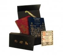 Predstavljanje kineskih izdanja Milorada Pavića u Kući kralja Petra