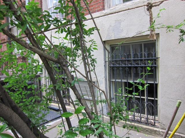 44 Morton Street, prozori Josifa Brodskog, photo © Isabel Bau Madden