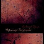 Varijacije neizrecivog: Nit paučine za svilene tajne zagubljenih knjiga