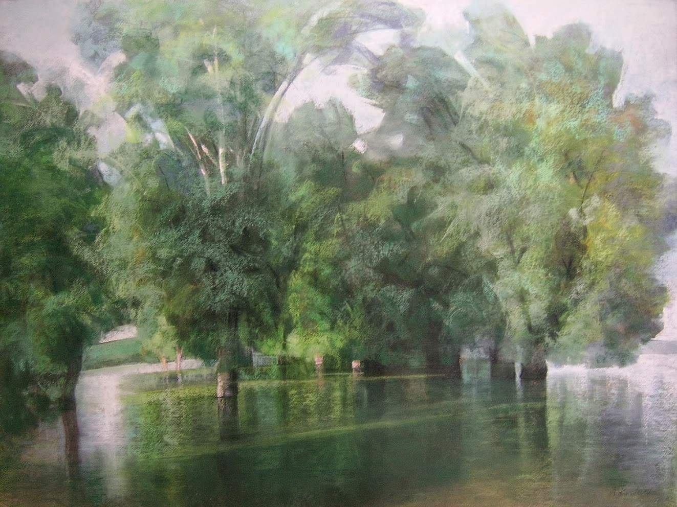 Krstevska, Drveće na Savi